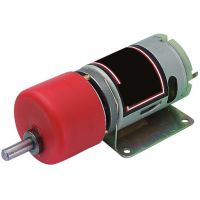 Motor 5-15 Reductor 148:1
